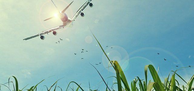 Prawa pasażera lotniczego – warto je poznać przed podróżą | wakacjebulgaria.com.pl